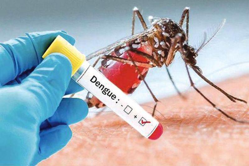 dengue-82ff2474d405d72b3a1d933ff8f910ac1625145043.jpg
