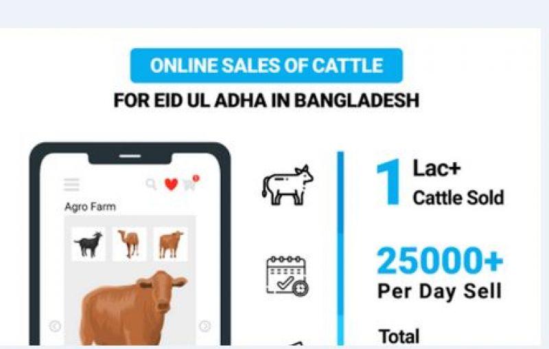 cattle-market-b-online-e980ec06f55155c84b3dc5c087374f831626711189.jpg