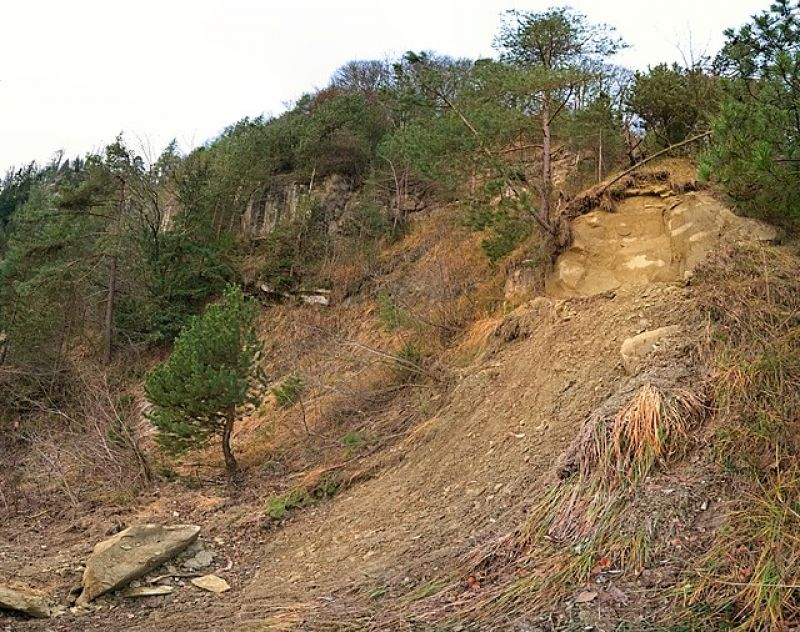 landslide-ae751e1e0118aa9e49003dbbc8ccbd2d1627622209.jpg