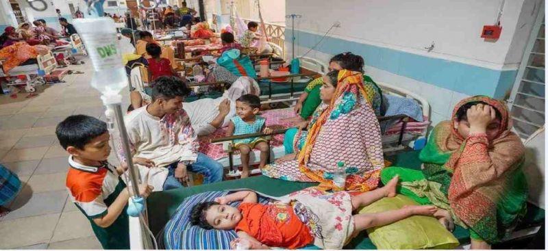dengue-now-final-80b64b4a10a12b346b90895a789460911634143492.jpg